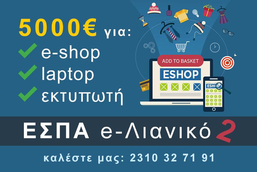 espa-5000-evro-gia-kataskevi-eshop.jpg